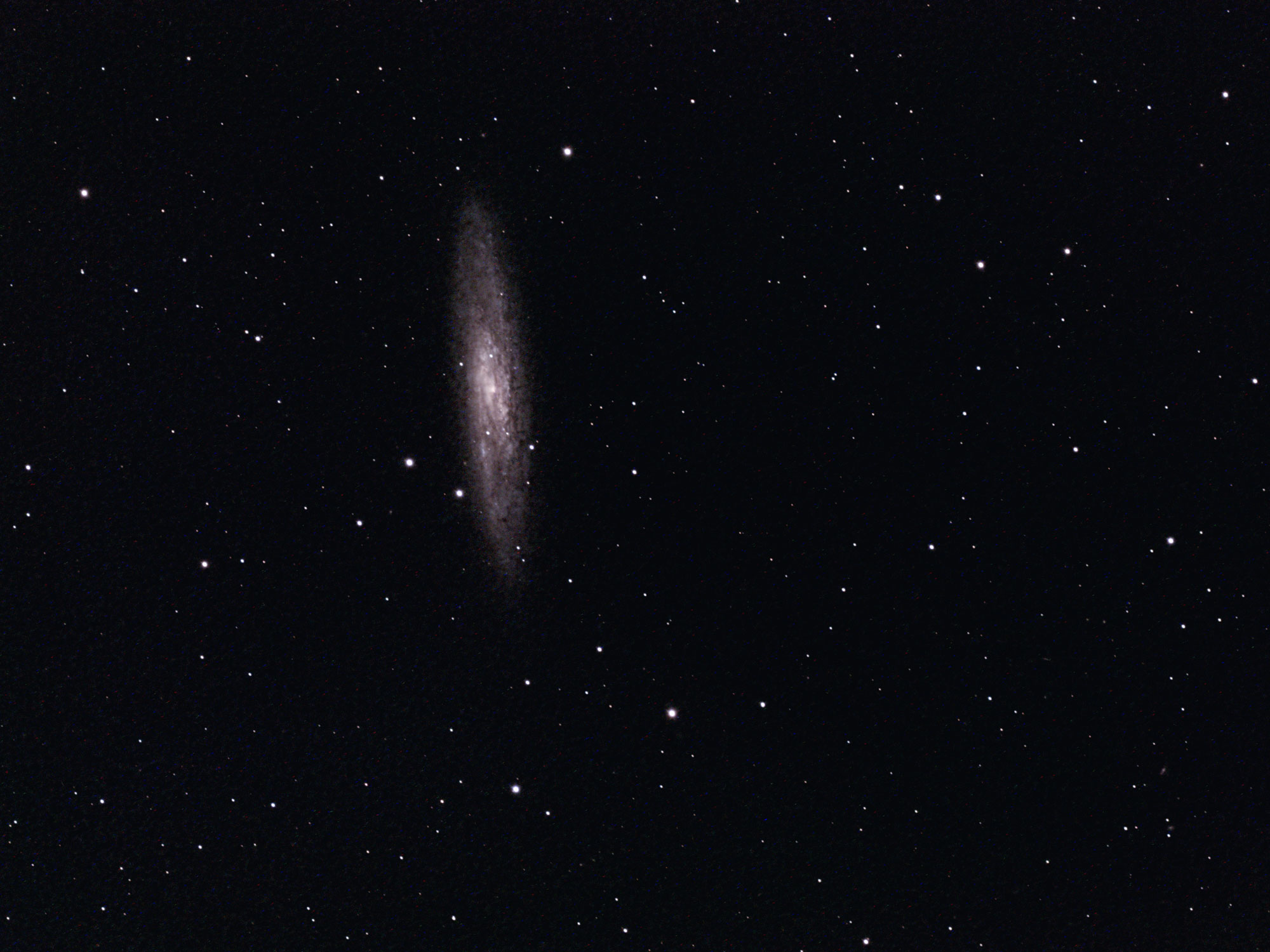 Sculpture Galaxy NGC 253 William Optics GT 102 ASI 294 astrophotography camera