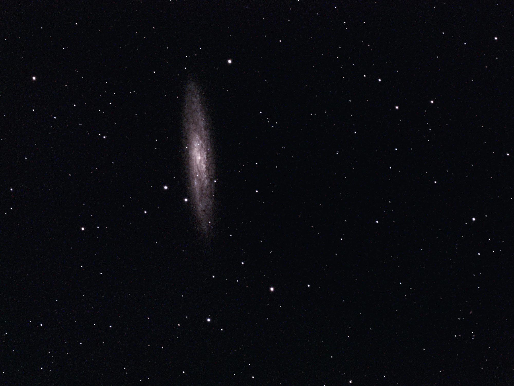 Sculpture Galaxy NGC 253 William Optics GT 102 ASI 294 astrophotography camera