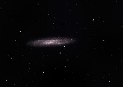 Sculpture Galaxy NGC 253 William Optics GT 102 ASI 294