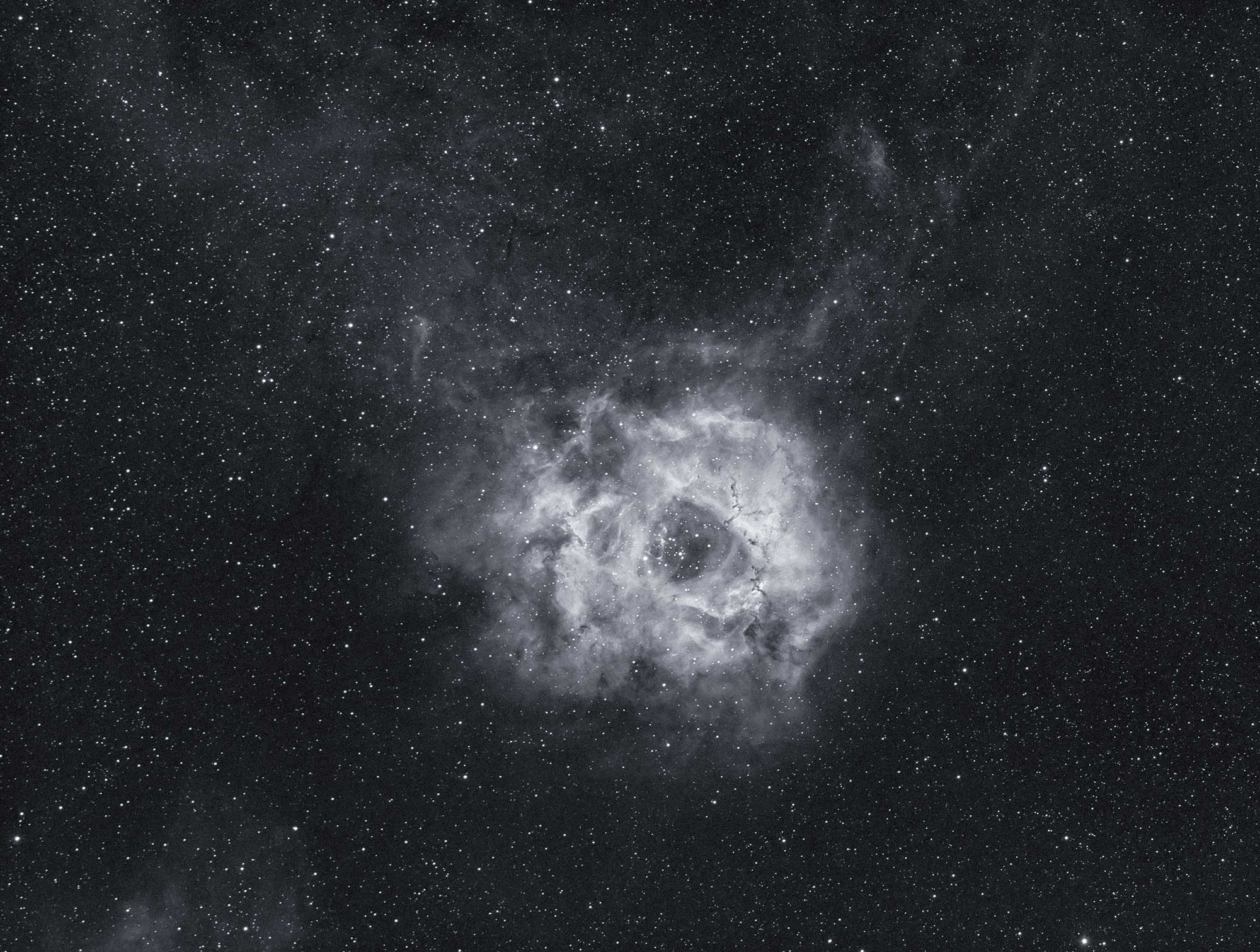 The Rosette Nebula in HA using the Borg55FL - 12*300 second subs calibrated with darks, flats and dark flats